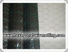 Hexagonal Wire Netting Rolls for Chicken Fencing